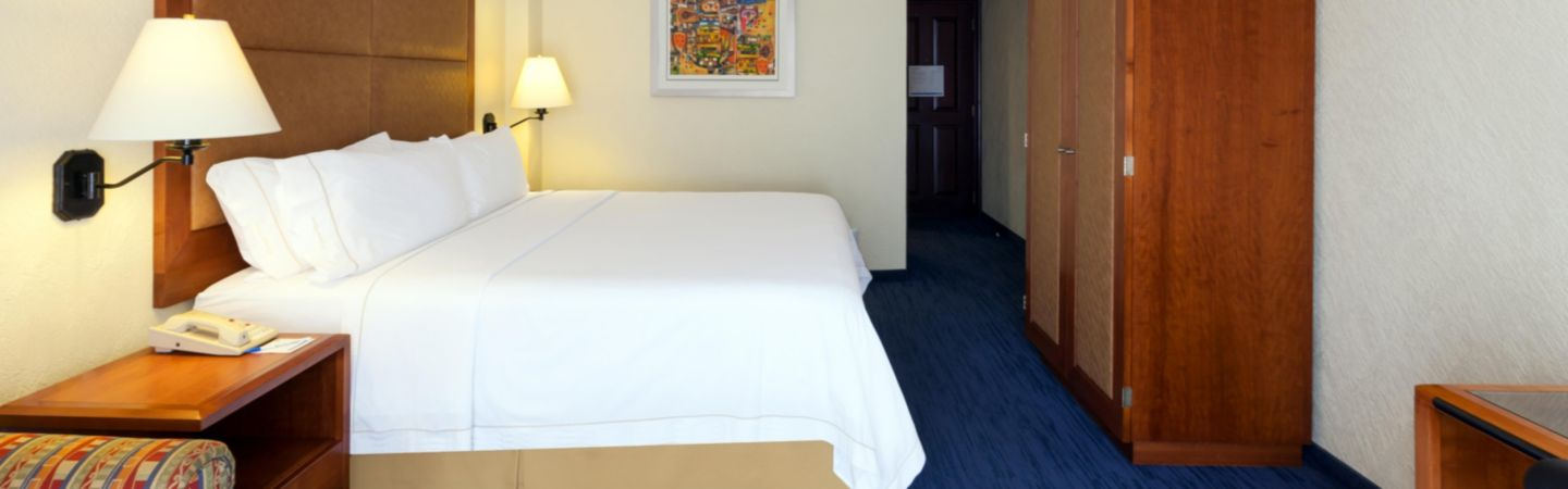 HOLIDAY INN EXPRESS CENTRO HISTORICO,