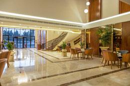 GERASA HOTEL , hotel, sistemazione alberghiera