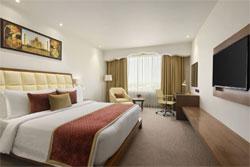 HOTEL RAMADA PLAZA AGRA , hotel, sistemazione alberghiera