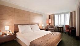 DEDEMAN ISTANBUL , hotel, sistemazione alberghiera