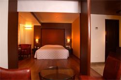 HOTEL GRAND GARDENIA , hotel, sistemazione alberghiera