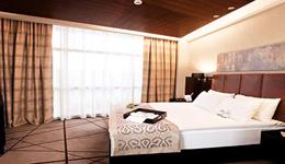 DEDEMAN GAZIANTEP , hotel, sistemazione alberghiera