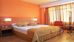 RADISSON BLU SAGA HOTEL , hotel, sistemazione alberghiera