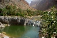 OMAN, Wadi Arbyeen