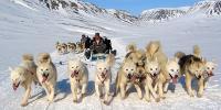 GROENLANDIA, Dog sledding