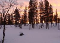NORDEUROPA, FINLANDIA, SAARISELKA