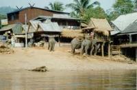 THAILANDIA, BIRMANIA, THAILANDIA , CHIANG RAI