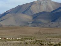 ARGENTINA, Salta, Argentina - Safari delle Nuvole