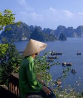 , vietnam, imbarcazioni di pescatori