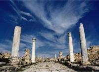CIPRONORD, Area archeologica di Salamina