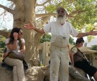 ISRAELE, kibbutz lavi