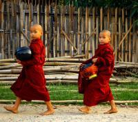 THAILANDIA, BIRMANIA, Piccoli monaci