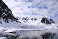 SVALBARD, Owe artico spitsbergen raudfjorden