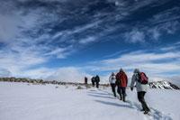 SVALBARD, Trekking alle svalbard