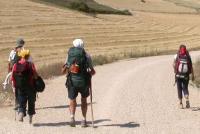 SPAGNA, Cammino di santiago, in marcia