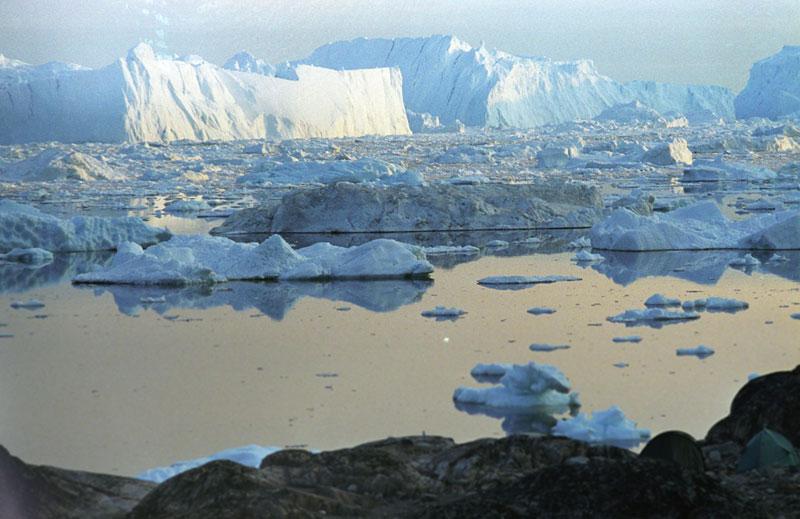 Viaggio in Svalbard: Crociera Alle Isole Svalbard Del 9 Giugno 2021